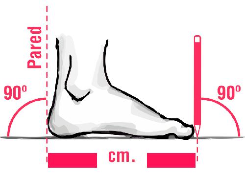 Guía medida pie